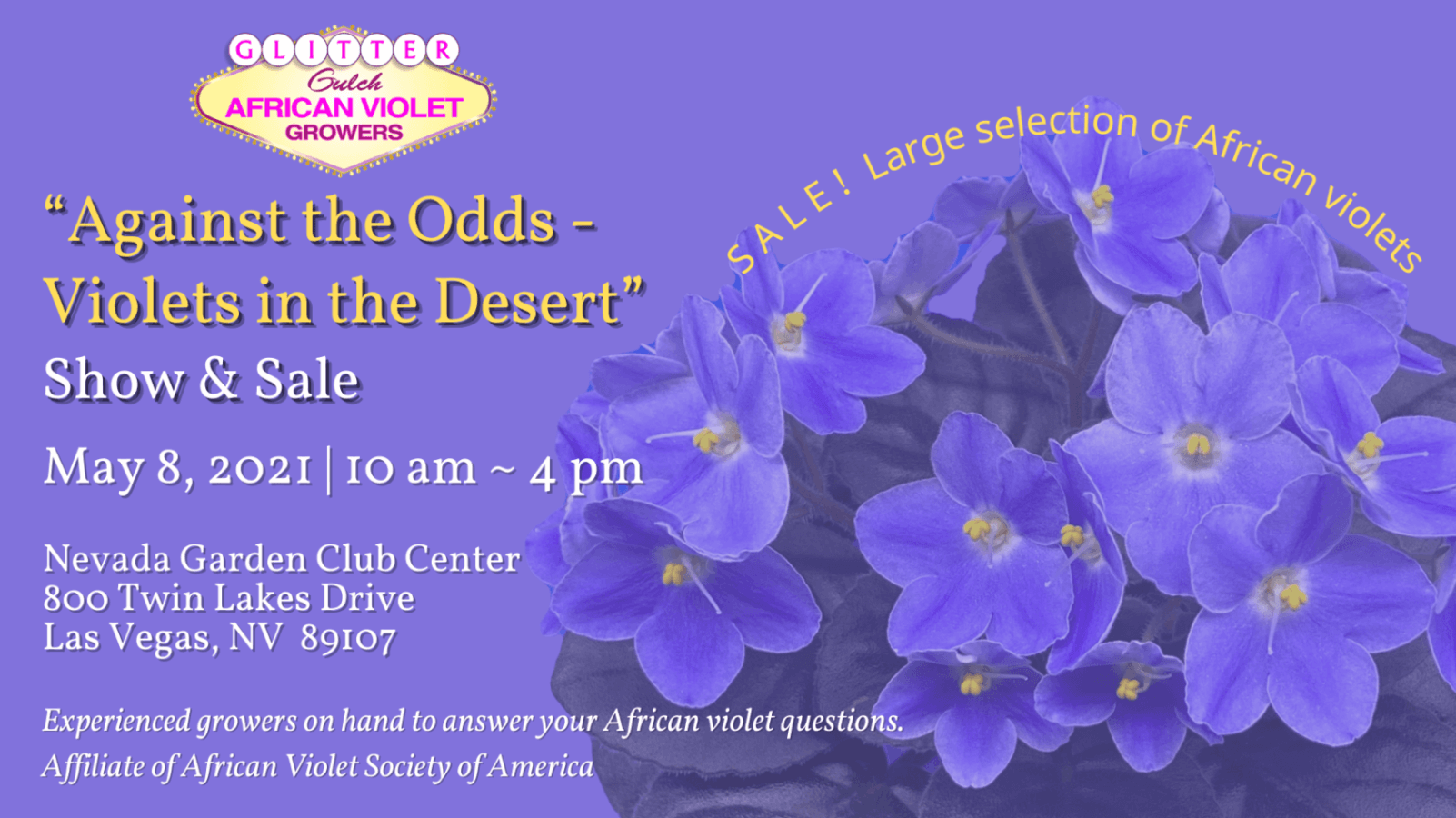 Against the Odds Violets in the Desert