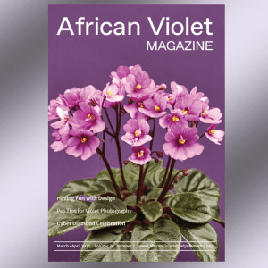 Cover of March 2021 African Violet Magazine