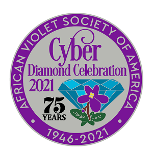 2021 AVSA Cyber convention souvenir pin