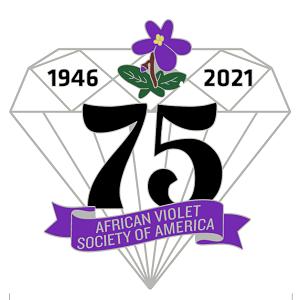 AVSA 75th Anniversary souvenir pin diamond shaped