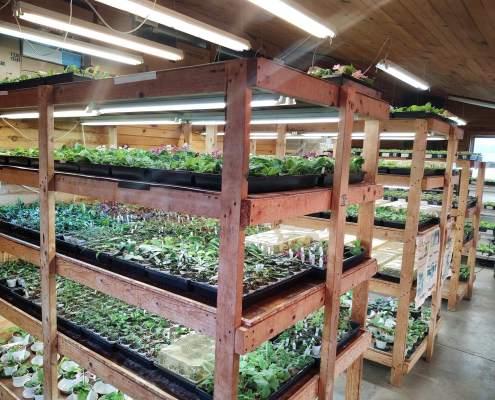 The Violet Barn Stockroom