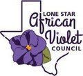 Lone Star Council