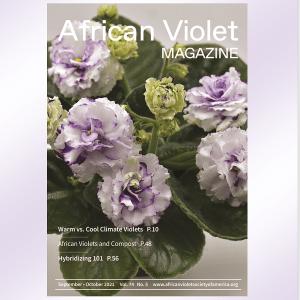 AVM Cover September October 2021 sq