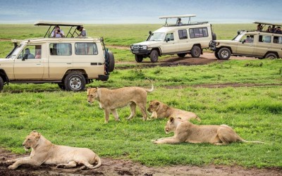 Arusha to make travel easier for tourists