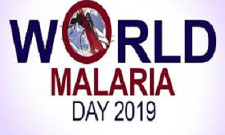 2019 World Malaria Day: Subject Yourselves To Medical Test Before Medication – Experts Tell Pregnant Women