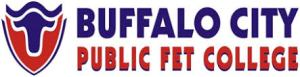 Buffalo City TVET College Online Application Form