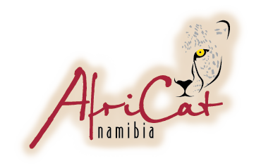 namibia dating page