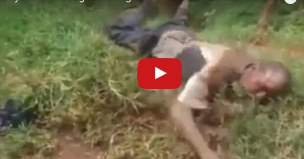 Man caught having sex with a married woman, bewitched to eat grass (VIDEO)