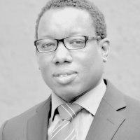 Les élections européennes des 22 – 25 mai 2014, une analyse de Souleymane Sokome, consultant juridique et politique