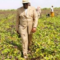 Sénégal: Fin de la tournée économique du Président Macky Sall dans la vallée du fleuve Sénégal, une analyse de Souleymane Sokome