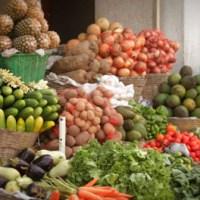 Dossier – L'innovation technologique va agir comme un catalyseur pour stimuler la productivité et la croissance dans le secteur agroalimentaire africain : rapport agroalimentaire de PwC