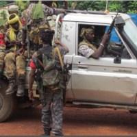 Groupe d'experts de l'ONU sur les mercenaires effectue sa première visite en République centrafricaine