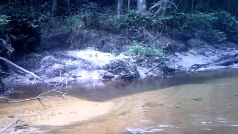 Une des rivières du Gabon