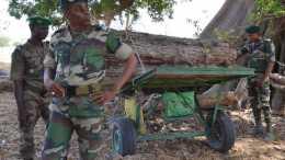 forêts Sénégal - Gambie
