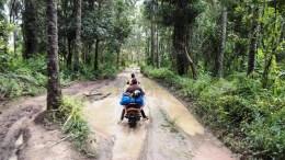 forêts transfrontalières entre le Sénégal, la Gambie et la Guinée-Bissau
