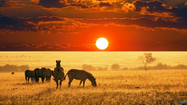 Nom Afrique