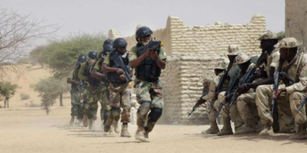 Niger combat
