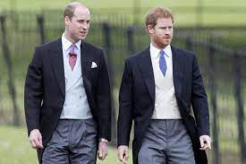 princes William Harry entrevue privée séparés amis
