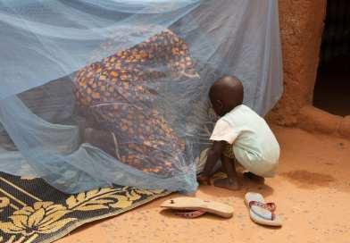 Niger : le paludisme a fait près de 2.450 morts depuis janvier 2020