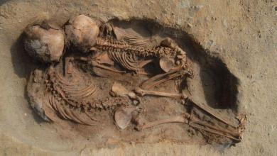 Largest child sacrifice from South American history discovered