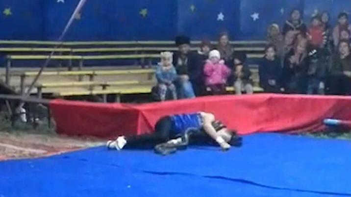 Video of circus snake trainer who is strangled by a constrictor