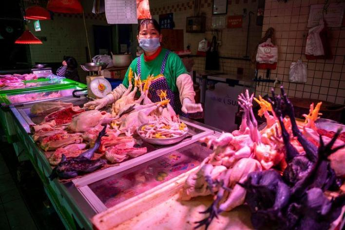After coronavirus: also outbreak of highly contagious bird flu in China