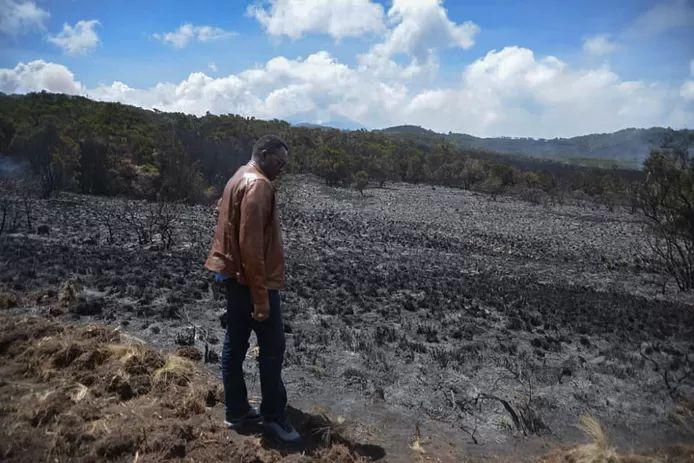 Fire on Kilimanjaro under control after five days