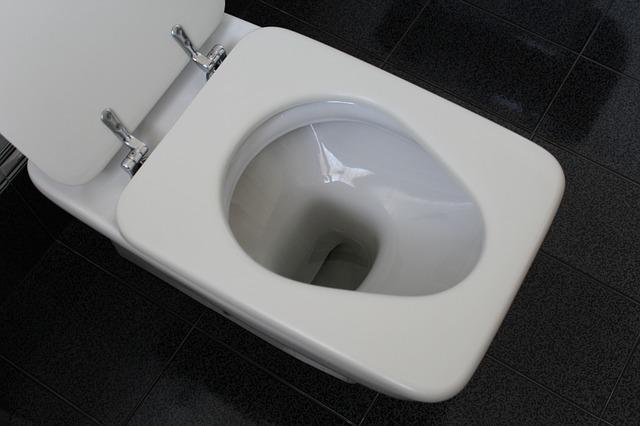 Company sanctions employees using toilet more than once a day