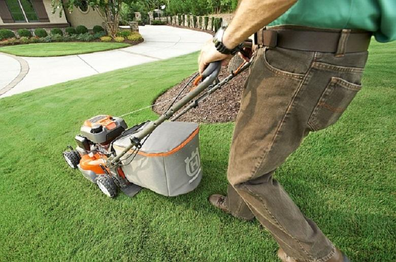 How to mow a lawn and what size of lawnmower do I need?