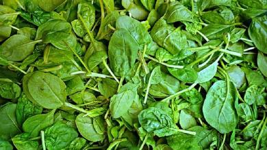 African foods that aid in weight loss