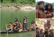No night sleep, stress, or envy: The Piraha tribe don't sleep