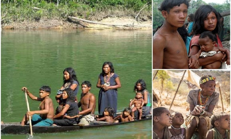 No night sleep, stress, or envy: The Piraha tribe don't sleep