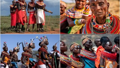 The closest relatives of the famous Maasai are the nomadic Samburu tribe. They live in the north and central regions of Kenya