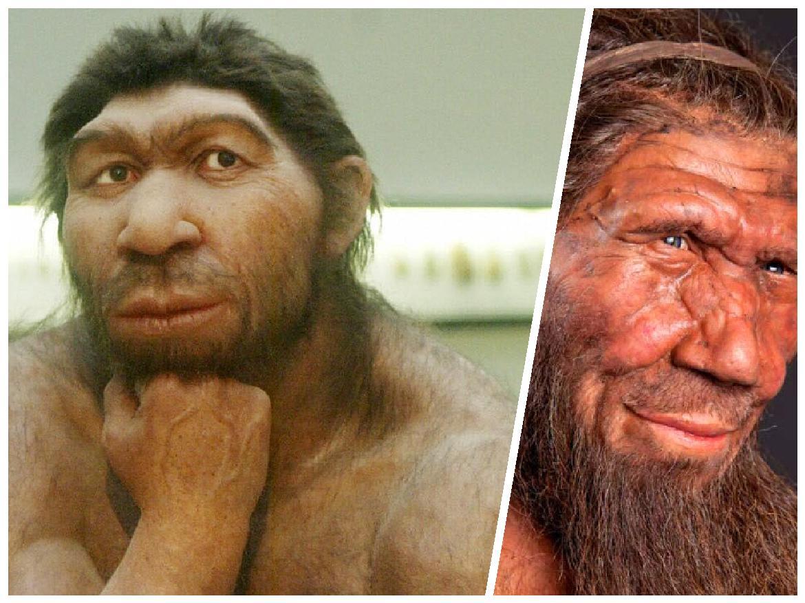 Recent discoveries that lift the veil of mystery over Neanderthals