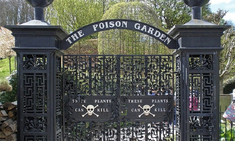 Alnwick Garden: The most poisonous garden in the world