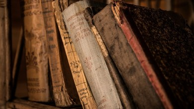 What secrets are kept by six legendary ancient libraries: Interesting facts