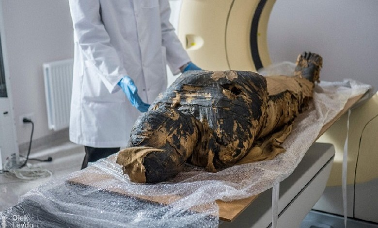 Polish scientists discover first pregnant mummy