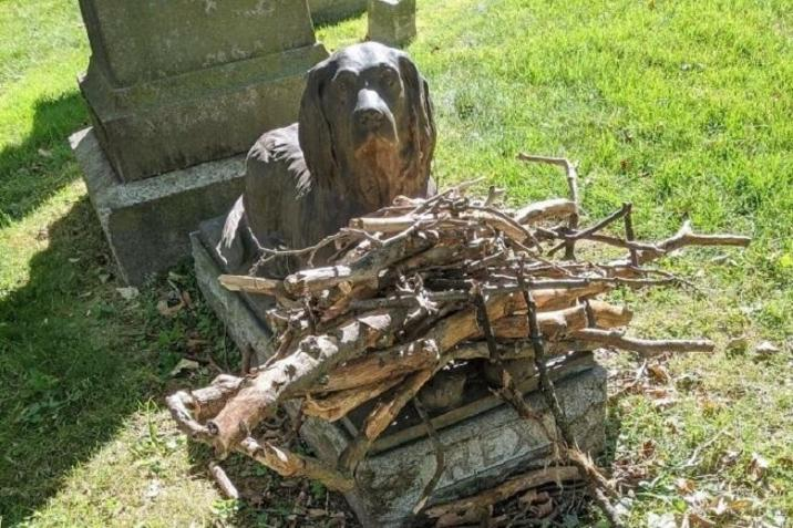 Visitors bring sticks to Rex as a sign of respect and in memory of their pets
