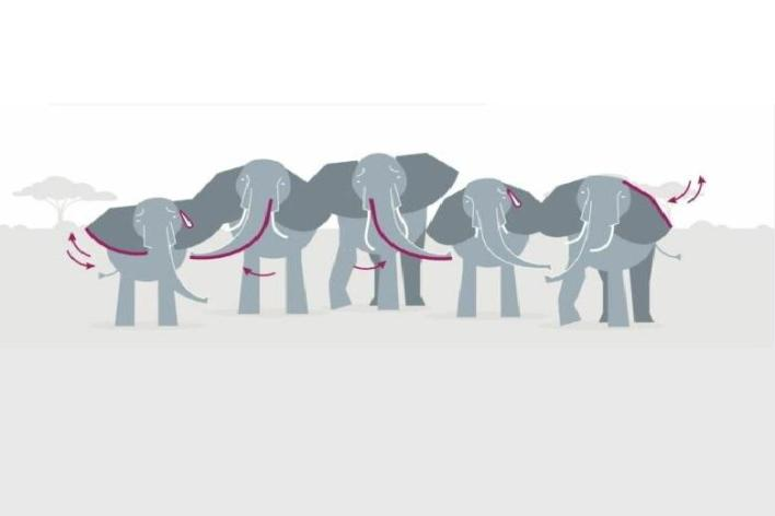 A sketchy image of the greeting of elephants