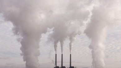 Scientists reveal how dirty air increases the rate of aging