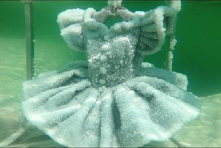 Salt sculptures of the Dead Sea that make you freeze with delight