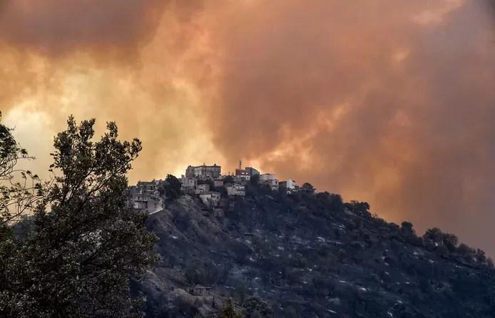 Forest Fire devastated the northeastern part of Algeria
