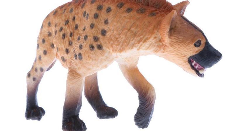 La hyène et le singe