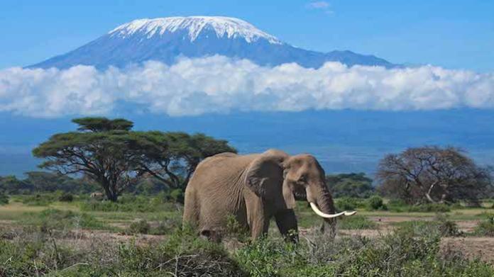 Pays riches : Tanzanie