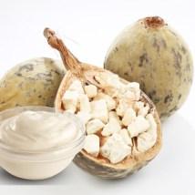 Bayonnaise : Mayonnaise 100% végétale au baobab !