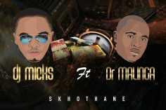 DJ Micks - Skhothane (feat. Dr Malinga)