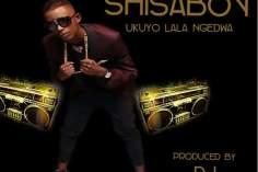Shisaboy - Ukuyolala Ngedwa (feat. DJ Alphy) 2017