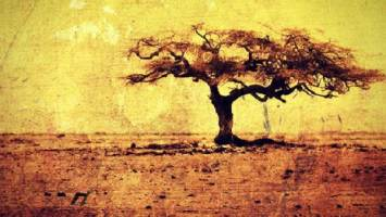 VA - We Are Africa / Native Okan Records