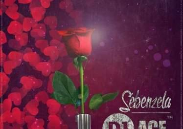 DJ Ace Sebenzela DJ Ace - Sebenzela feat. Mellow Bee