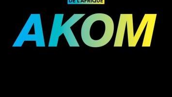 Freak De L'Afrique - Akom (DJ Satelite Remix)